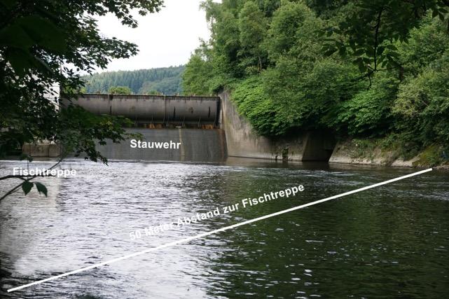 los-xi-unterhalb-stauwehr